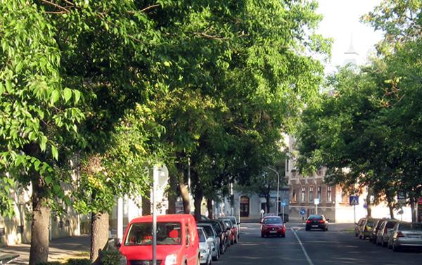 Újteleki utca